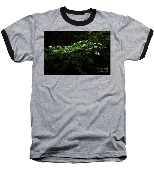 Baseball T-Shirt featuring the photograph A Light In The Darkness by Skip Willits