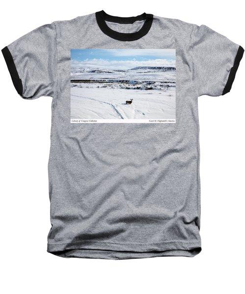 A Lone Buck Deer In Carbon County, Wyoming Baseball T-Shirt by Carol M Highsmith