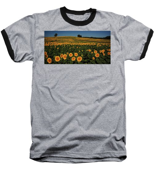 Baseball T-Shirt featuring the photograph A Lot Of Birdseed  by Chris Berry