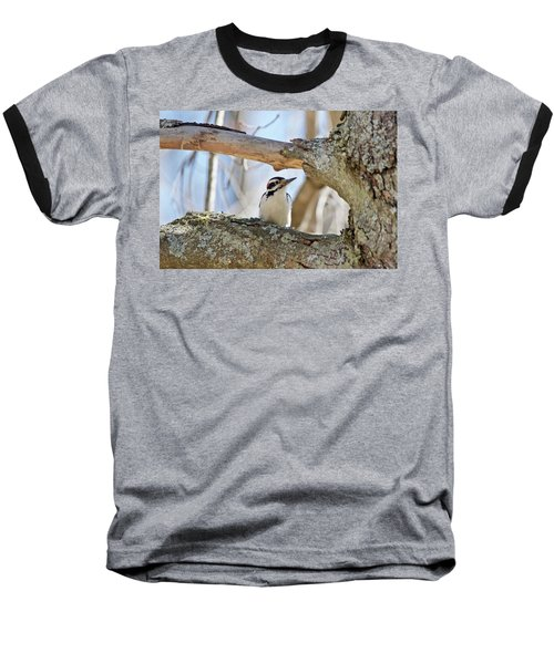 Baseball T-Shirt featuring the photograph A Male Downey Woodpecker  1111 by Michael Peychich