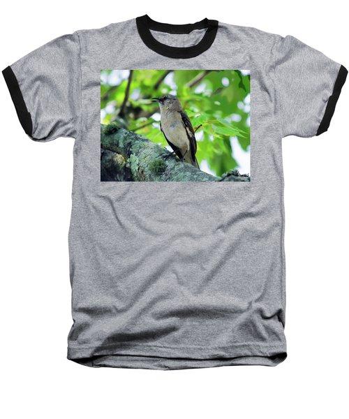 A Mockingbird Song Baseball T-Shirt