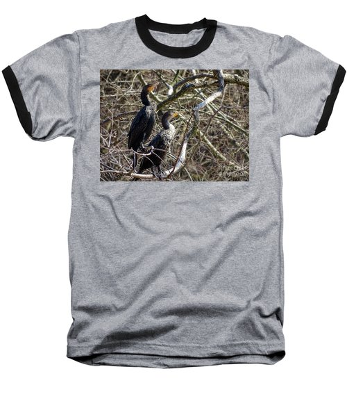 A Pair Of Cormorants Baseball T-Shirt by Melissa Messick