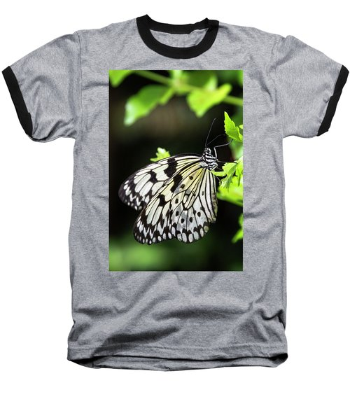 Baseball T-Shirt featuring the photograph A Paper Kite Butterfly On A Leaf  by Saija Lehtonen