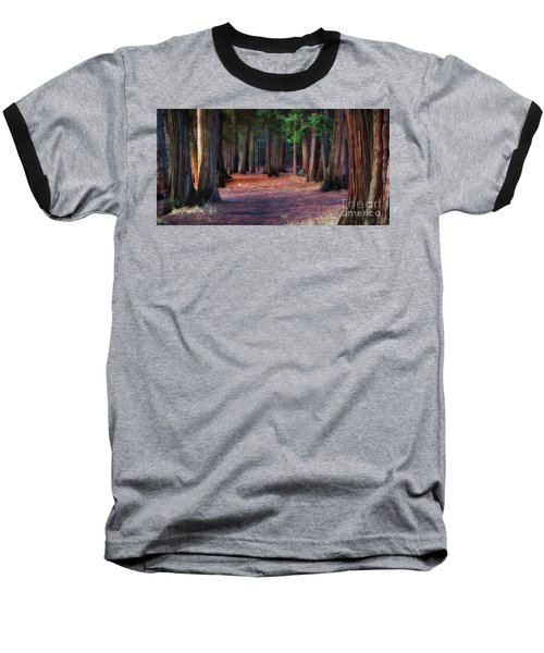 A Path Of Redwoods Baseball T-Shirt