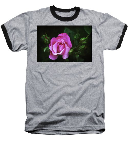 A Pink Rose Baseball T-Shirt by Trina Ansel