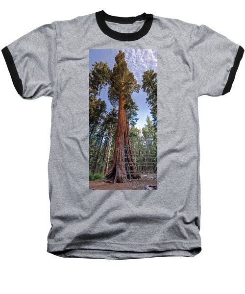 A Poem Lovely As A Tree.   Baseball T-Shirt