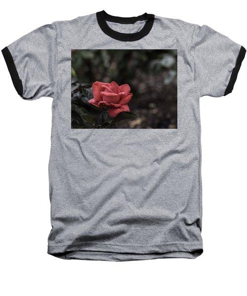 A Red Beauty Baseball T-Shirt by Ed Clark