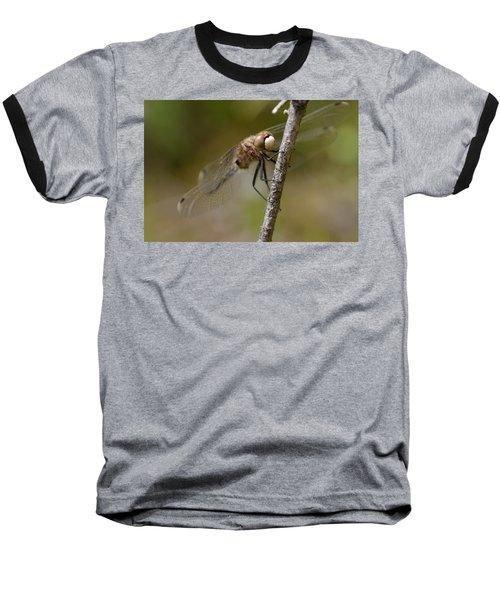 A Rest Baseball T-Shirt by Janet Rockburn