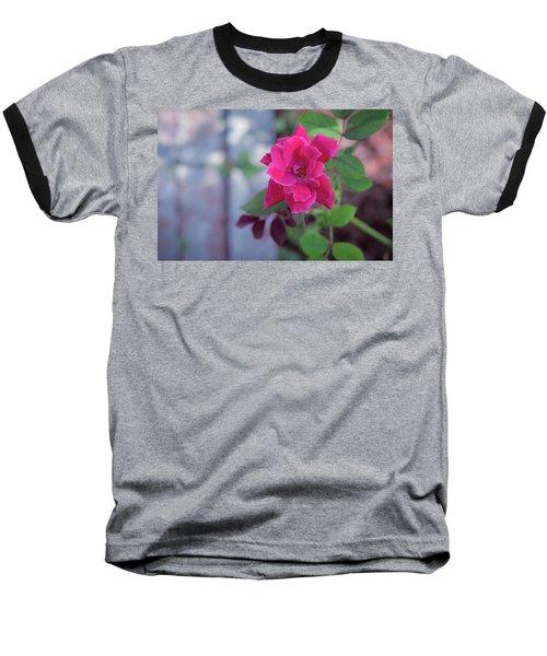 A Rose And A Hard Place Baseball T-Shirt by Stefanie Silva