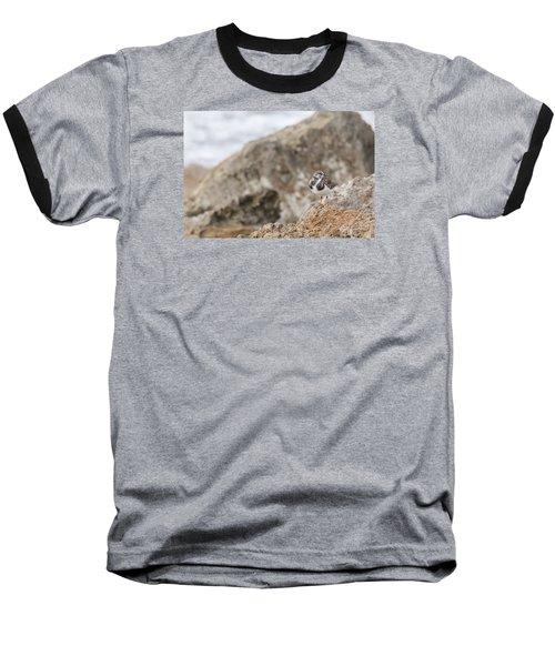 A Ruddy Turnstone Perched On The Rocks Baseball T-Shirt