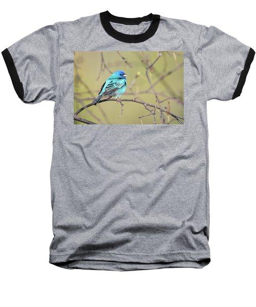 A Shiny Blue Gem Baseball T-Shirt