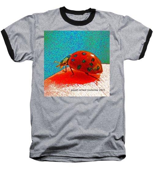 A Spring Lady Bug Baseball T-Shirt