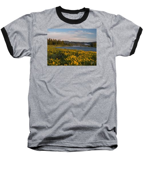 A Spring Morning Baseball T-Shirt by Leland D Howard
