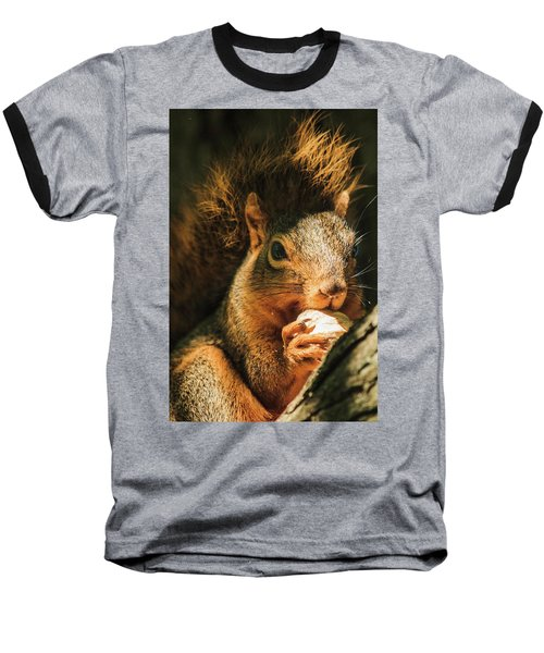 A Squirrel And His Nut Baseball T-Shirt