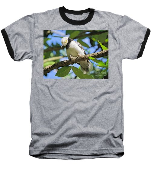 A Starling To Remember Baseball T-Shirt