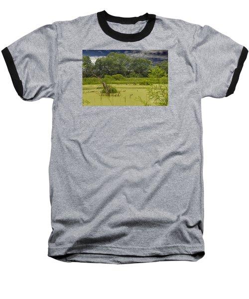 A Swamp Thing Baseball T-Shirt
