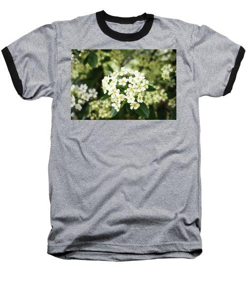 A Thousand Blossoms 3x2 Baseball T-Shirt
