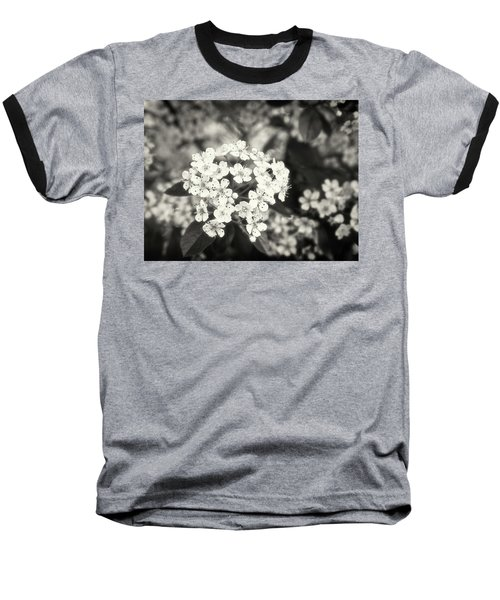 A Thousand Blossoms In Sepia 3x4 Flipped Baseball T-Shirt