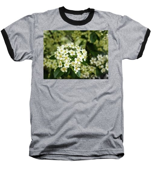 A Thousand Blossoms Baseball T-Shirt