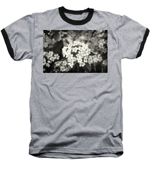A Thousand Blossoms Sepia 3x2 Baseball T-Shirt