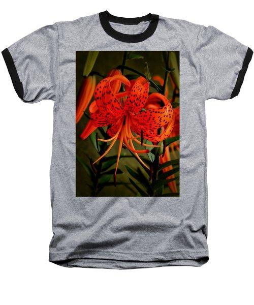A Tiger Baseball T-Shirt