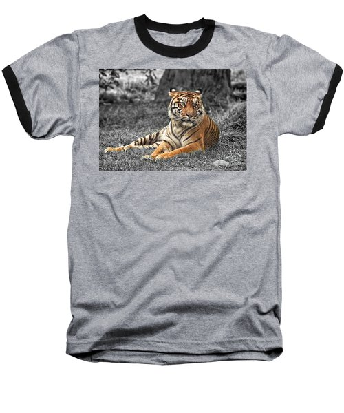 A Tiger Relaxing On A Cool Afternoon II Baseball T-Shirt