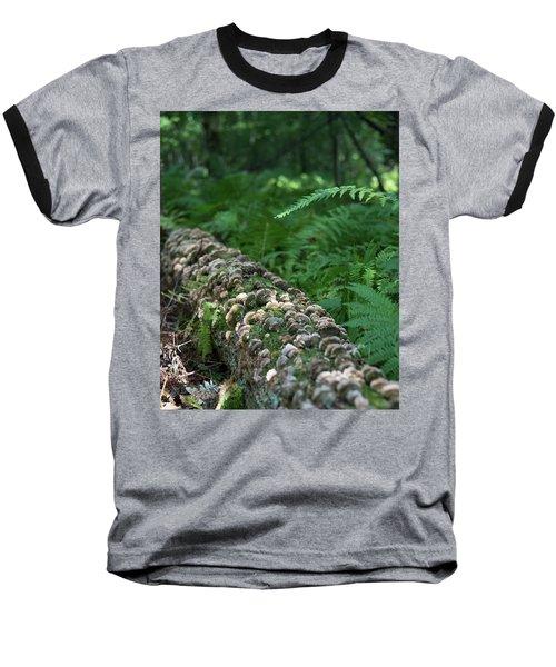 A Touch Of Sun Baseball T-Shirt