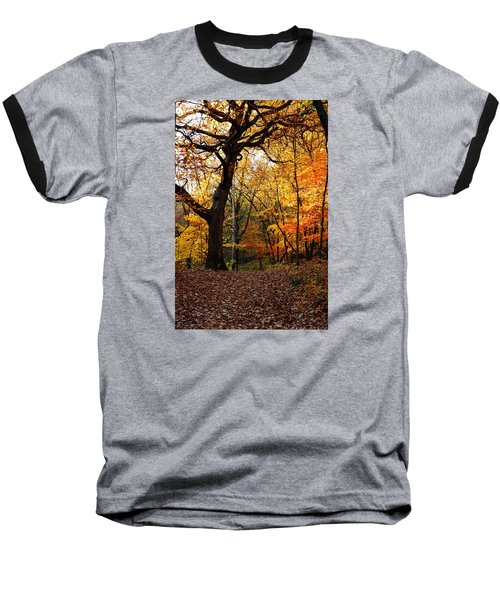 Baseball T-Shirt featuring the photograph A Walk In The Woods 2 by Steven Clipperton