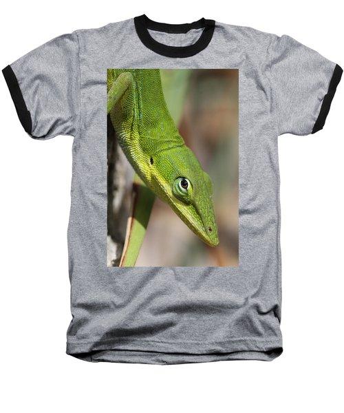 A Watchful Eye Baseball T-Shirt by Doris Potter
