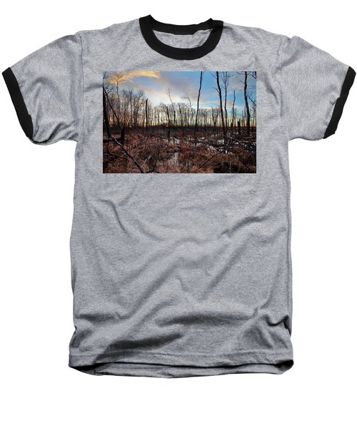 A Wet Decay Baseball T-Shirt by Ryan Crouse