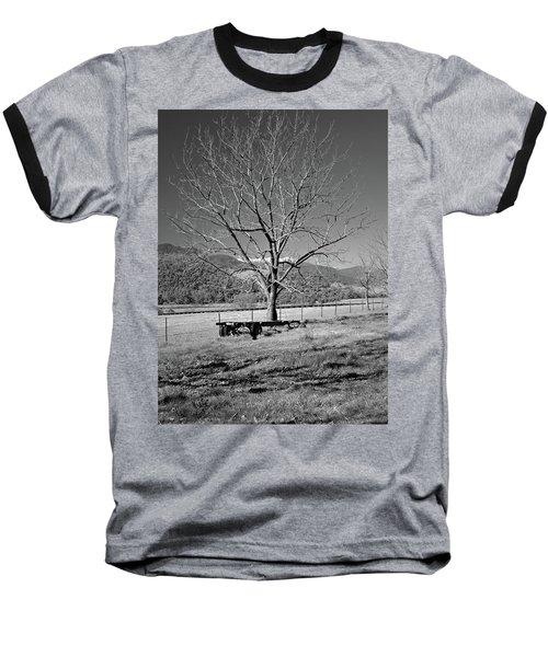 A Wintery Stand Baseball T-Shirt