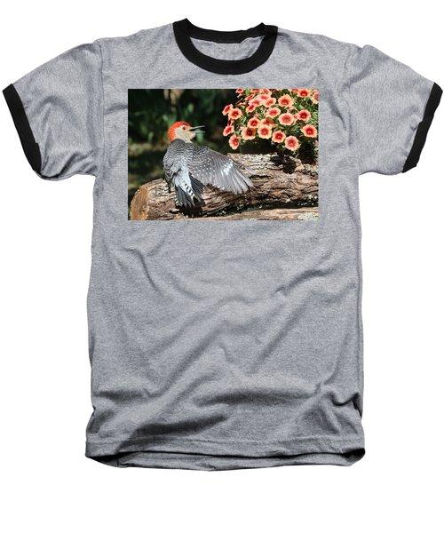 A Woodpecker Conversation Baseball T-Shirt by Sheila Brown