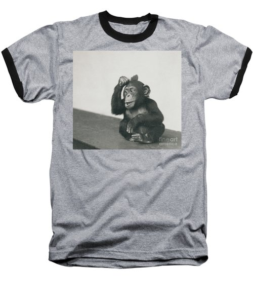 A Young Chimpanzee Playing With A Brush Baseball T-Shirt