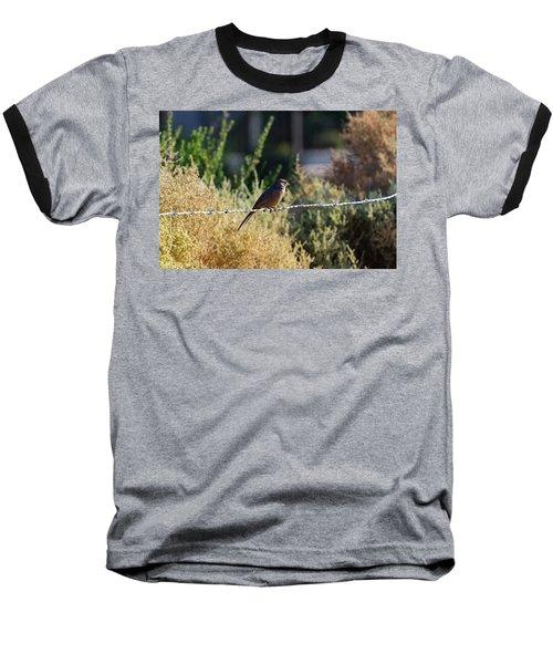 Abert's Towhee Baseball T-Shirt