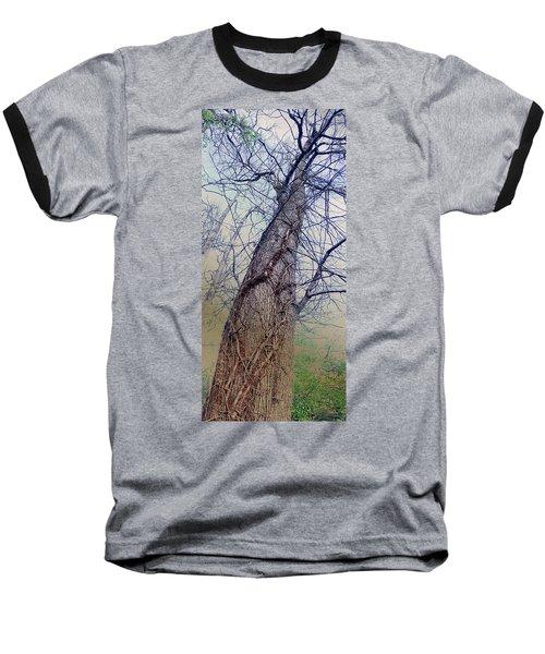 Abstract Tree Trunk Baseball T-Shirt