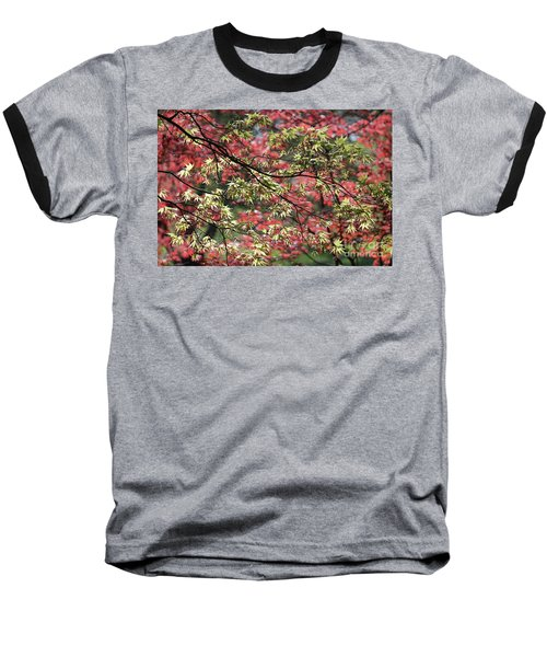 Acer Leaves In Spring Baseball T-Shirt