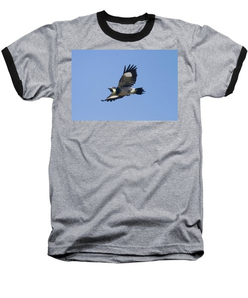 Acorn Woodpecker Baseball T-Shirt