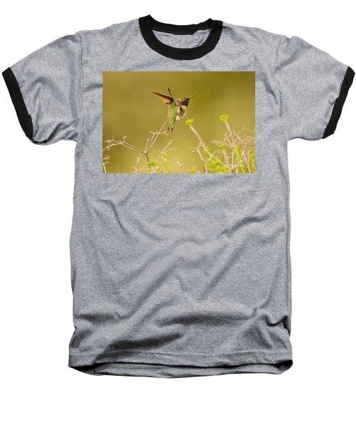 Acrobat Baseball T-Shirt