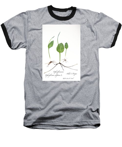 Adder'stongue Baseball T-Shirt