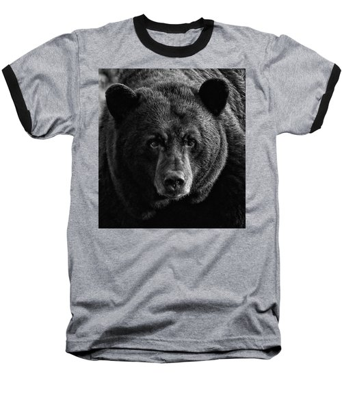 Adult Male Black Bear Baseball T-Shirt