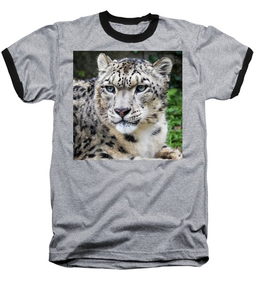Adult Snow Leopard Portrait Baseball T-Shirt