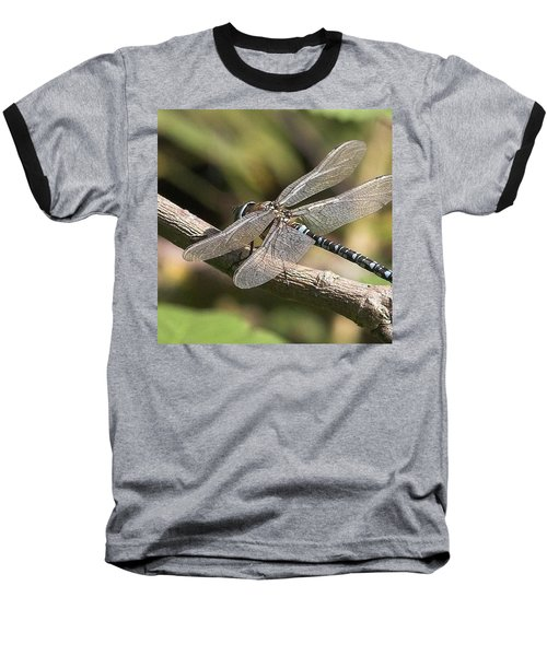 Aeshna Juncea - Common Hawker Taken At Baseball T-Shirt