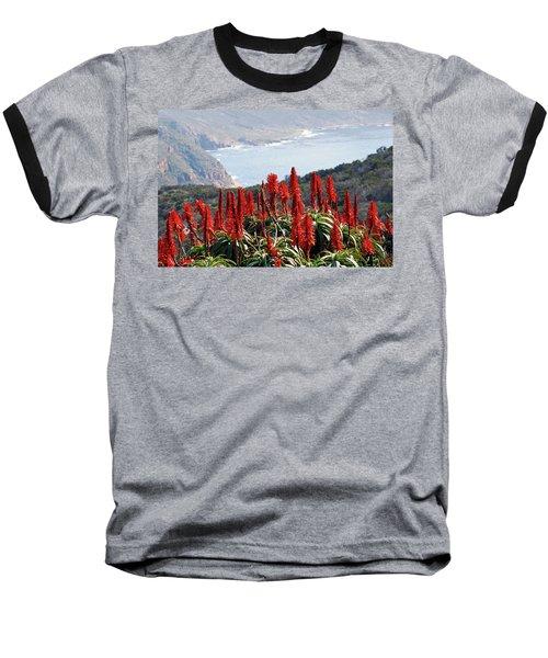 African Aloe And False Bay Baseball T-Shirt