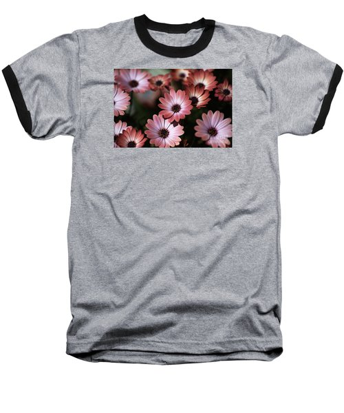 African Daisy Zion Red Baseball T-Shirt