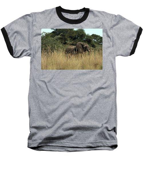 African Elephant In Tall Grass Baseball T-Shirt