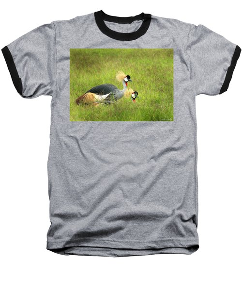 African Gray Crown Crane Baseball T-Shirt