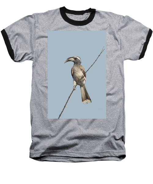 African Grey Hornbill Tockus Nasutus Baseball T-Shirt by Panoramic Images