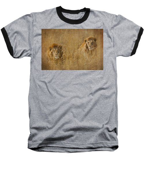 African Lion Brothers Baseball T-Shirt by Kathy Adams Clark