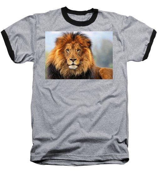African Lion 1 Baseball T-Shirt by Ellen Henneke