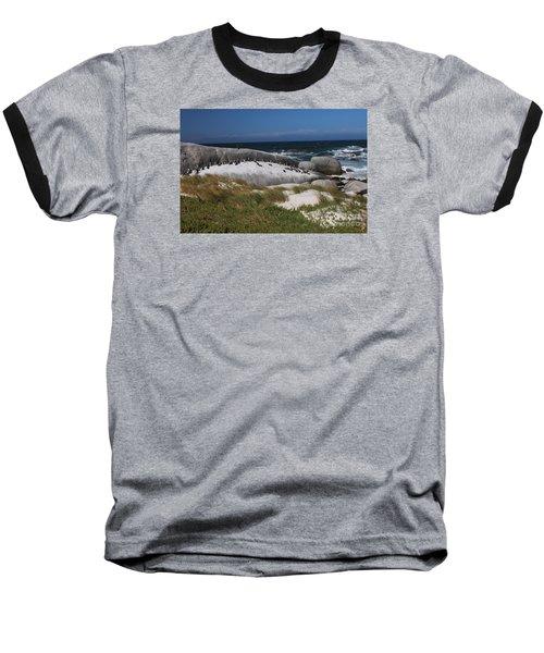 African Penguins Baseball T-Shirt by Bev Conover